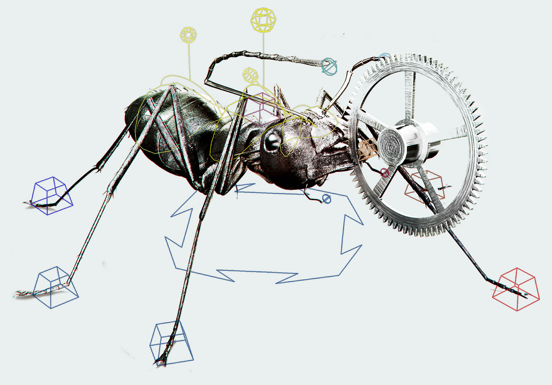 Harrods Ants